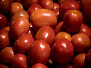 La Tomatina : Perang Tomat Ala Kota Bunol