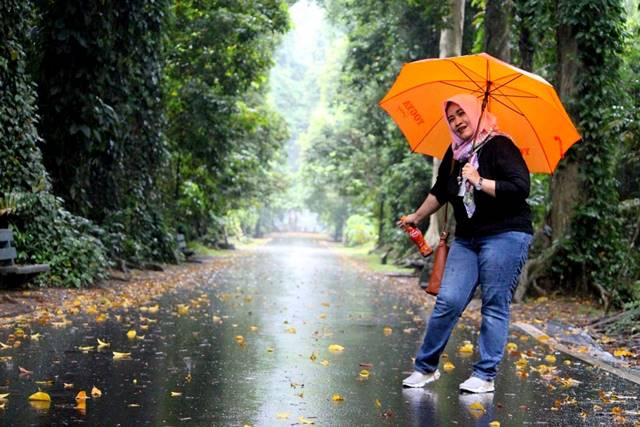Jangan Pernah Lupa Membawa Payung Berwarna Mencolok Saat Berwisata