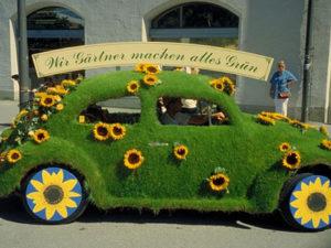 Mobil Berlapis Rumput – Butuh Cuci Mobil atau Tukang Taman