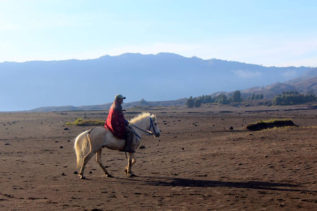 [FOTO] Penunggang Kuda Bromo