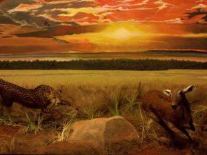 Diorama Cheetah Berburu Rusa – Museum Satwa, Jatim Park #1
