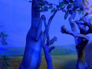 Diorama Rusa Berdiri Menjangkau Pucuk Pohon – Museum Satwa, Jatim Park #13