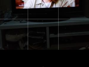 Beda Fitur PHOTO Dan PORTRAIT Pada Kamera Smartphone OPPO A3s