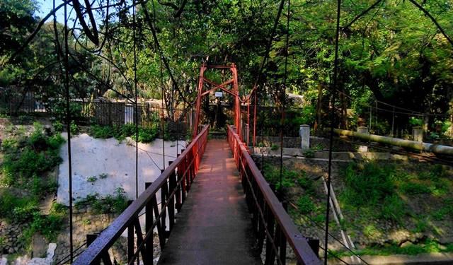Mitos Jembatan Putus Cinta di Kebun Raya Bogor