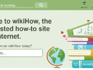 Wikihow : Menjadi Terkenal Dan Kaya Dengan Berbagi Pengetahuan Remeh Temeh