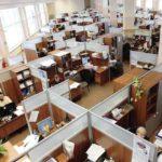 Tips Membimbing Karyawan Lulusan Baru Fresh Graduate
