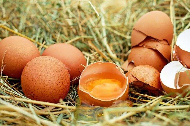 Telur, Si Bulat-Lonjong Yang Terkenal Di Seluruh Dunia