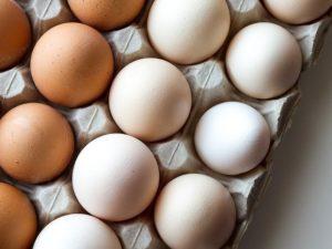 Cara Menguji Kesegaran dan Menyimpan Telur