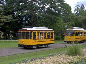 [Foto] Garden Tram Taman Bunga Nusantara
