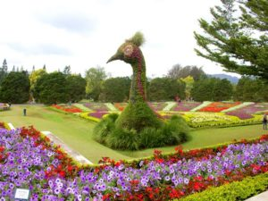 [Foto] Patung Kepala Merak Ikon Taman Bunga Nusantara Cianjur