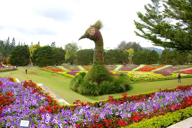 Patung Kepala Merak Ikon Taman Bunga Nusantara A